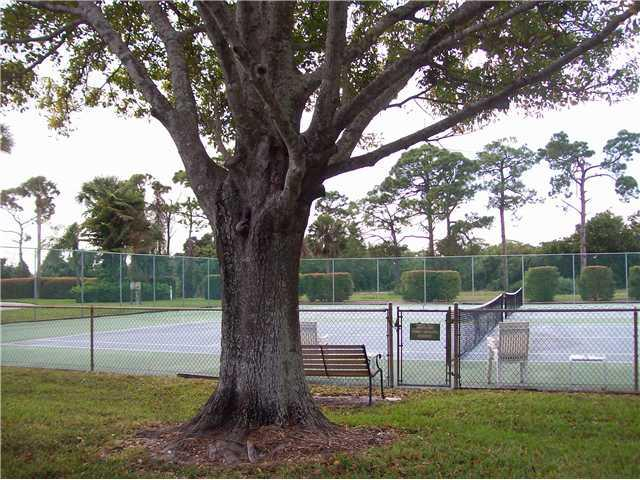 Tennis Courts of the Banyan House Condos