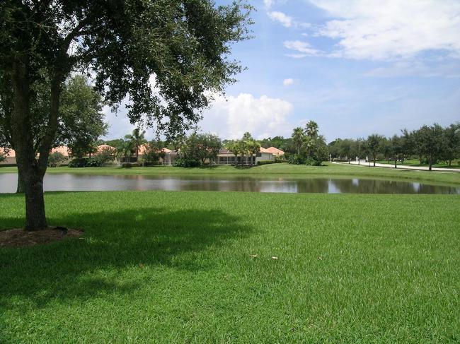 Pool side lake 2